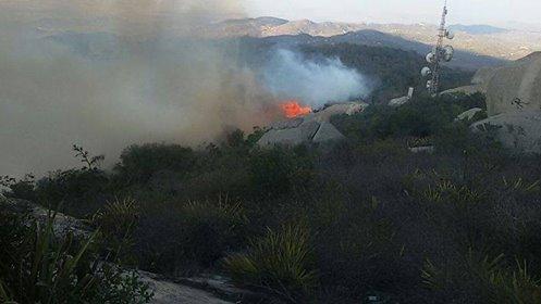 Incêndio no Pico do Jabre pode ter sido criminoso. Vegetação levará até 15 anos para se recuperar.