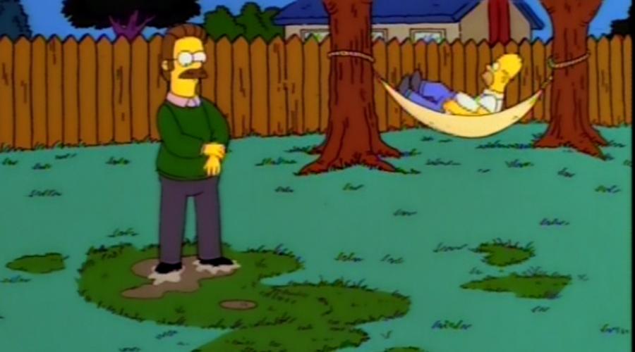 Simpson versus Flanders