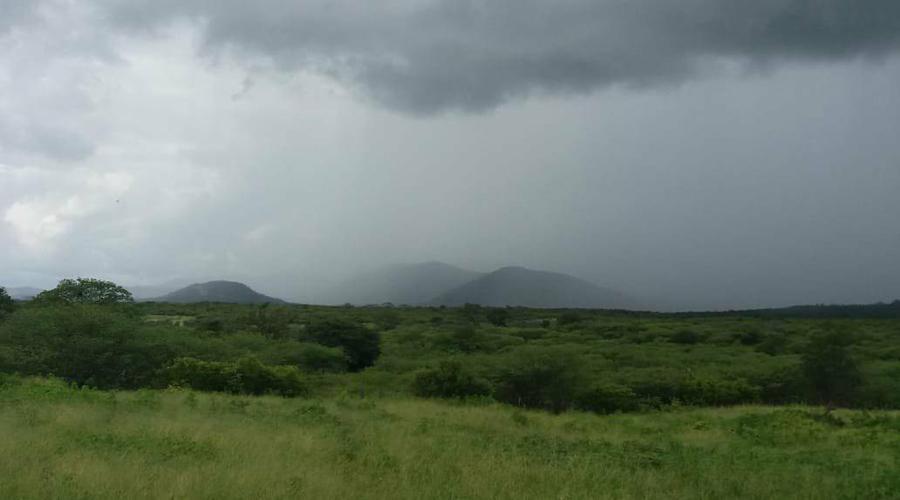 Chove 55 milímetros em Manaíra
