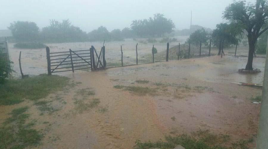 Estudioso prevê chuvas isoladas em novembro, dezembro e acima da média em janeiro no semiárido da Paraíba