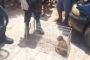 Quatro pessoas são presas em operação contra o tráfico de drogas em Patos
